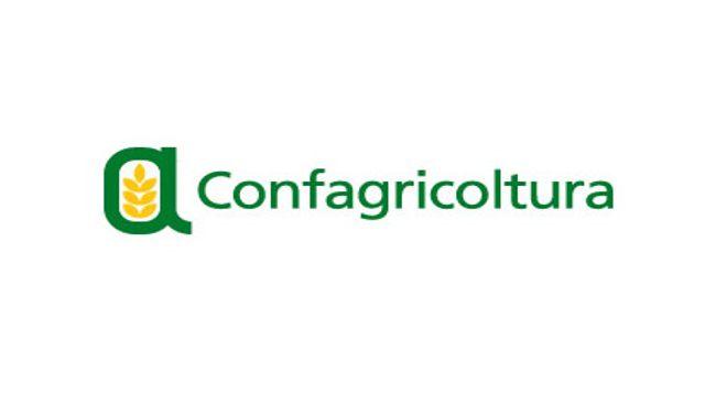 Confagricoltura Benevento sollecita l'assessorato all'Agricoltura sul Psr    NTR24.TV - News su cronaca, politica, economia, sport, cultura nel Sannio
